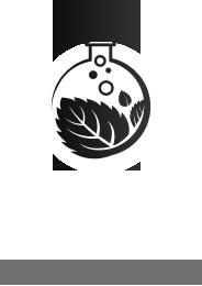 Spa Hải Đăng